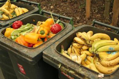 Kampf gegen Lebensmittelverschwendung